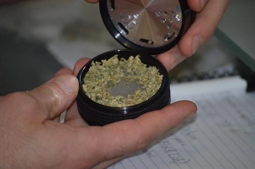 dry-herbs-in-herb-grinder-storage