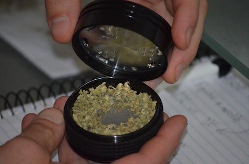 dry-herbs-in-herb-grinder